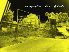 CAJT - SOYALE TO FISH