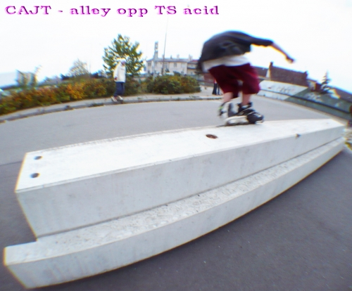 CAJT - Alley Opp TS Acid